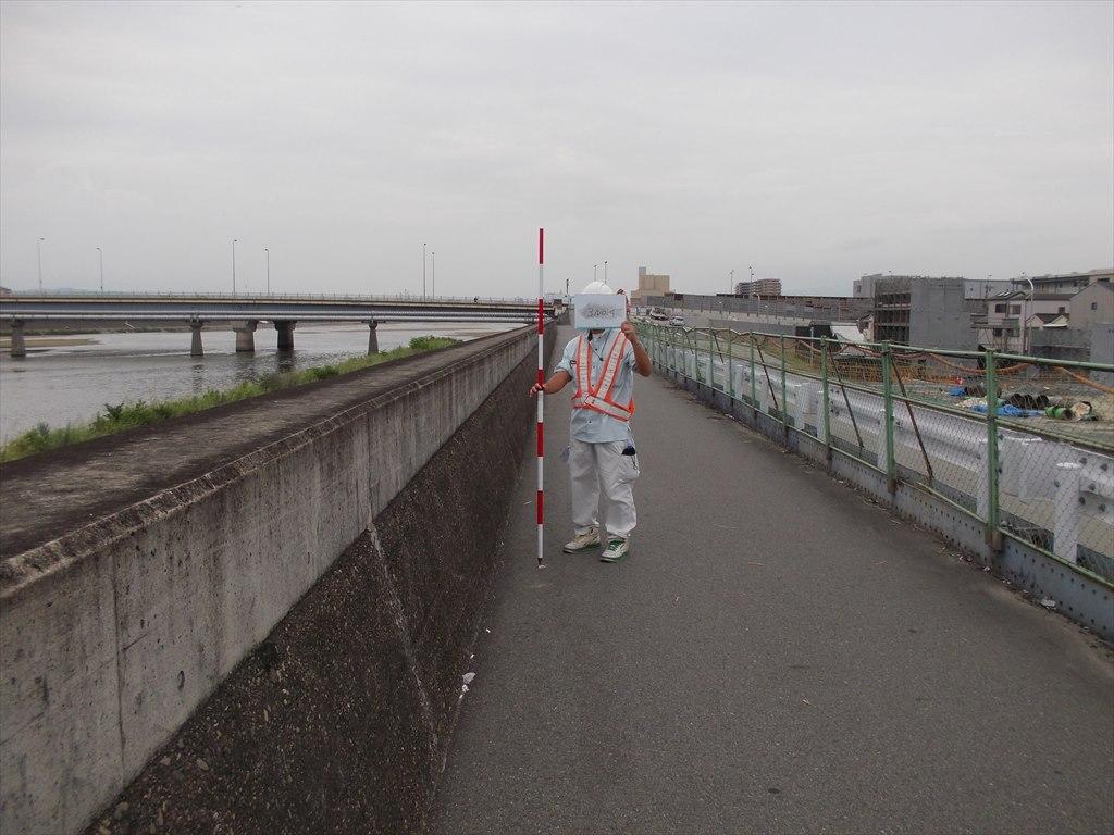 大和川左岸(三宝)土地区画整理事業に伴う測量業務